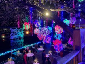 Mozart's Light Show | Holiday Activities in Austin